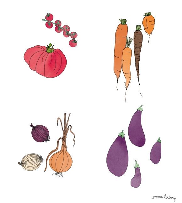 Série de légumes, illustrations, Lyon